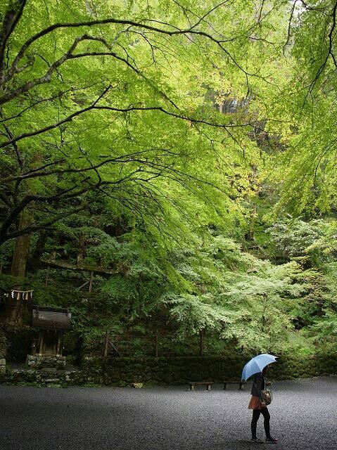 雨の日の貴船神社にて撮影