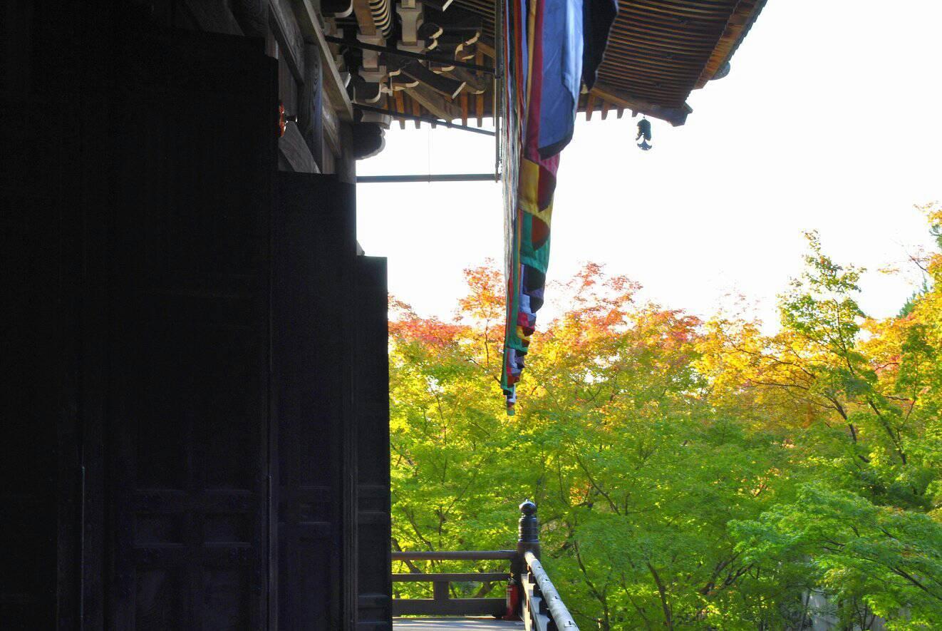永観堂の紅葉の写真 お寺