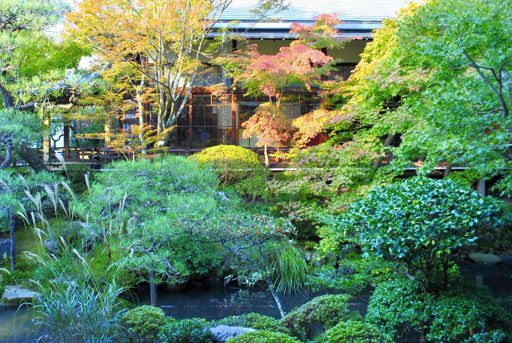 永観堂の中庭の写真