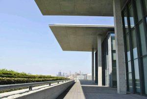 兵庫県立美術館 大ひさしの写真
