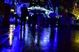 中之島イルミネーションストリートの写真 photo 雨の日
