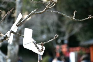 長山稲荷神社 写真 Photo おみくじ