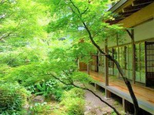 高野山で鍼灸 恵光院 Photo