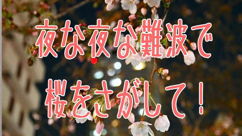 難波駅で桜さがす